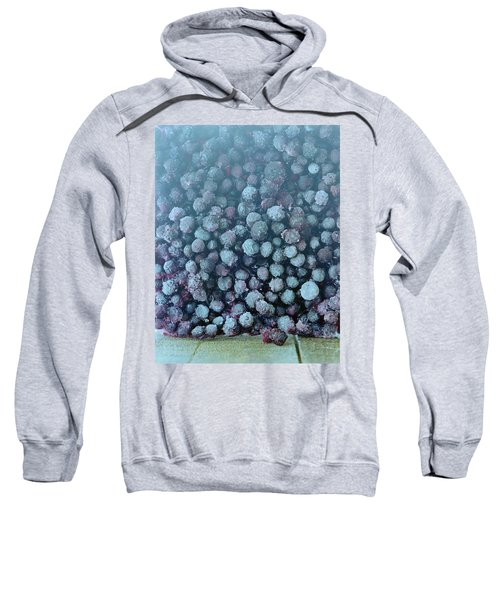 Frozen Blueberries Sweatshirt