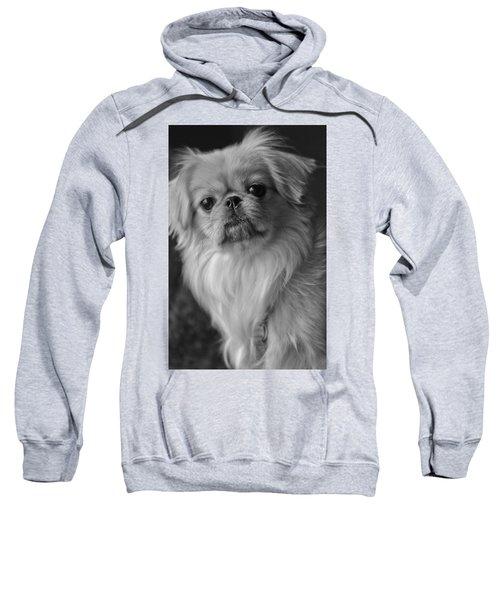 Fuzzface Sweatshirt