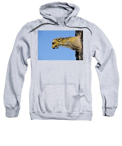Gargoyle Sweatshirt