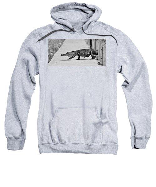 Gator Walking Sweatshirt