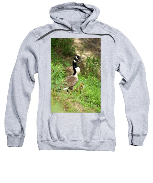Sweatshirt featuring the photograph Geese And Gosling by Kim Pate
