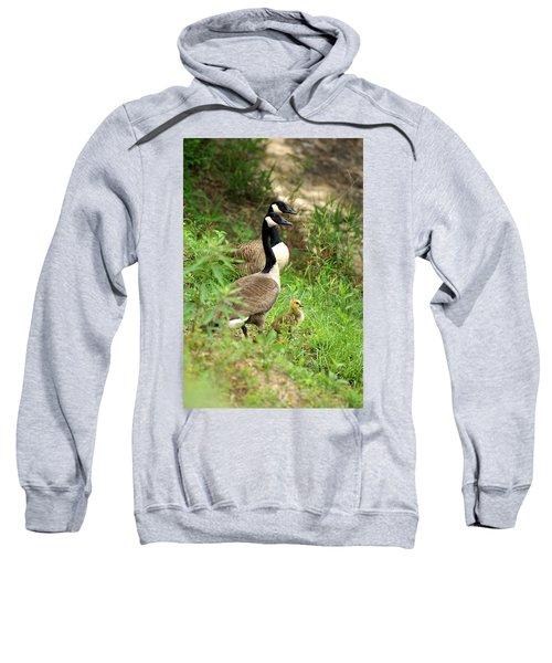 Geese And Gosling Sweatshirt