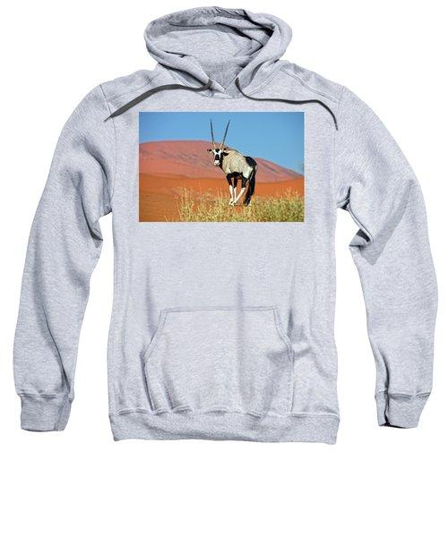Gemsbok Oryx Gazella In Typical Desert Sweatshirt