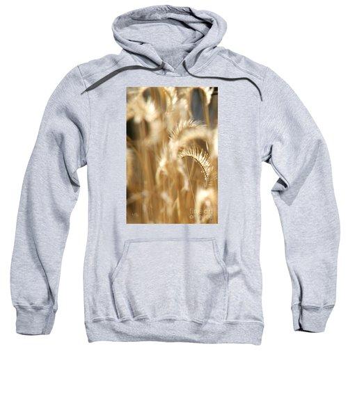 Gentle Life Sweatshirt