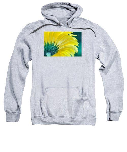 Gerber Daisy Sweatshirt