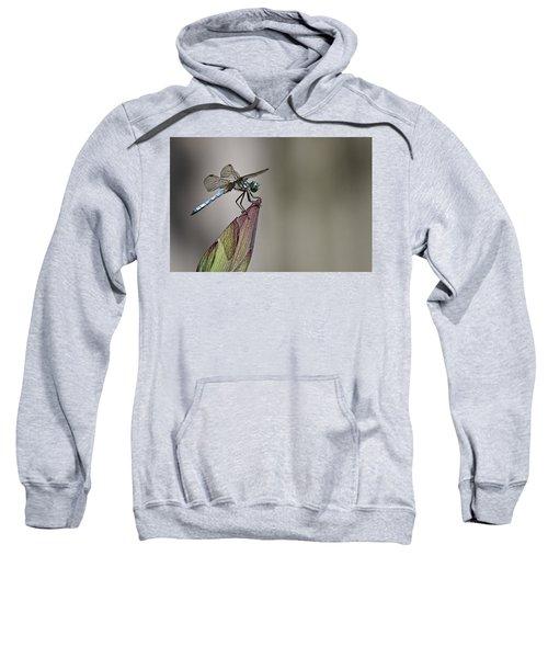 Get A Grip Sweatshirt
