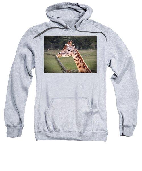 Giraffe 02 Sweatshirt