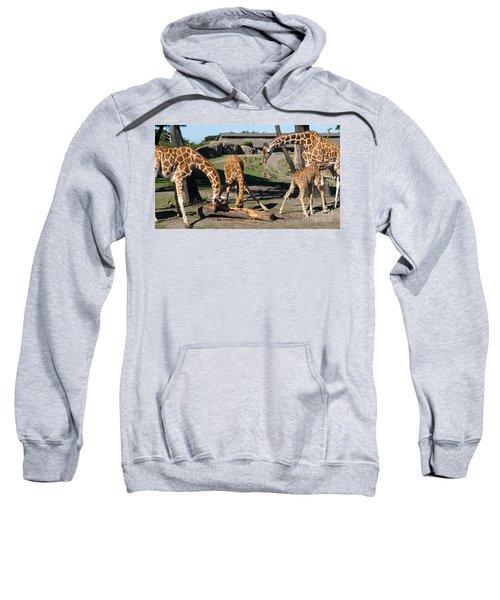 Giraffe Dsc2873 Long Sweatshirt