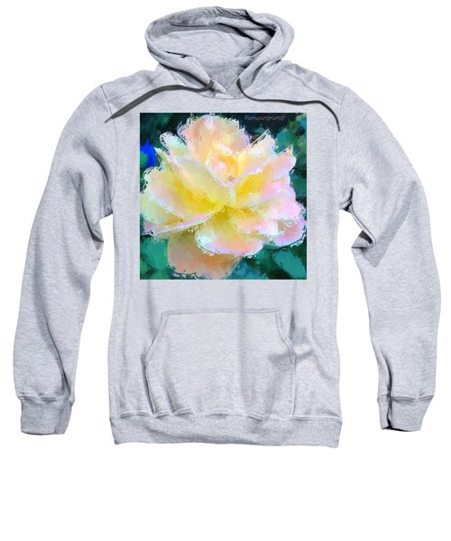 Glazed Pale Pink And Yellow Rose  Sweatshirt by Anna Porter