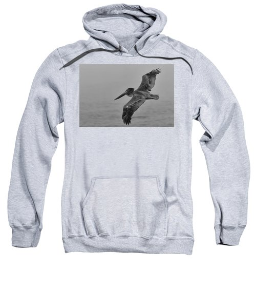 Gliding Pelican In Black And White Sweatshirt