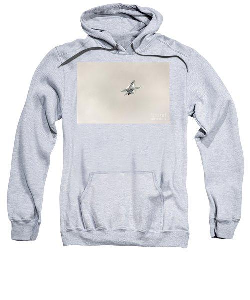 Going Vertical IIi Sweatshirt