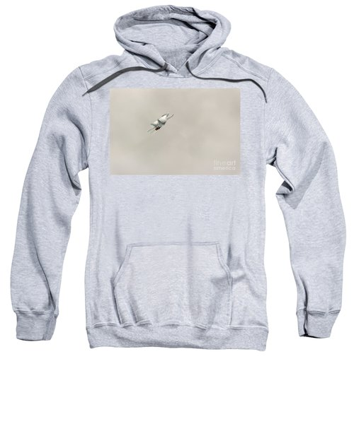 Going Vertical Sweatshirt
