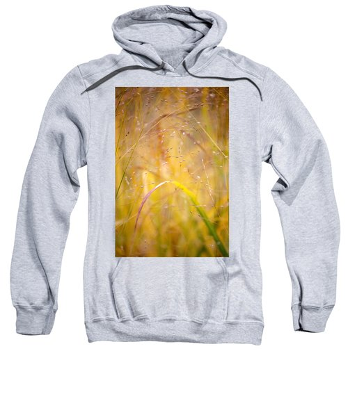 Golden Grass Sweatshirt