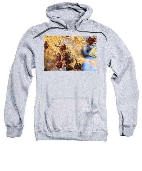 Golden Needles Sweatshirt