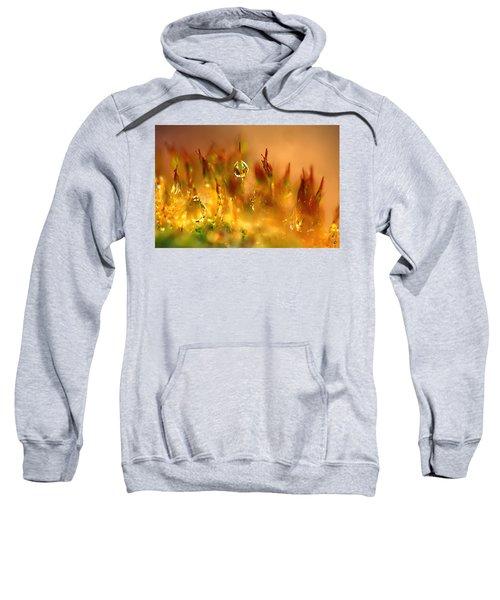 Golden Palette Sweatshirt