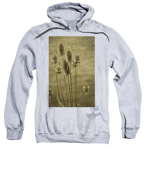Golden Thistles Sweatshirt