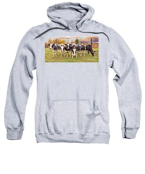 Got Grain? Sweatshirt