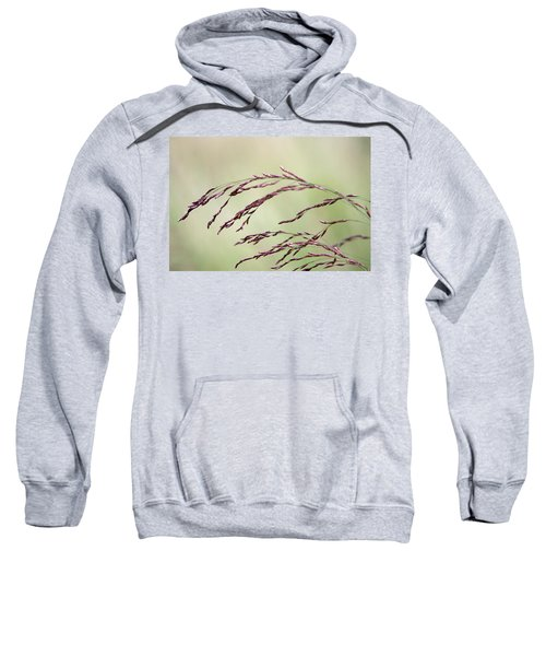 Grass Seed Sweatshirt