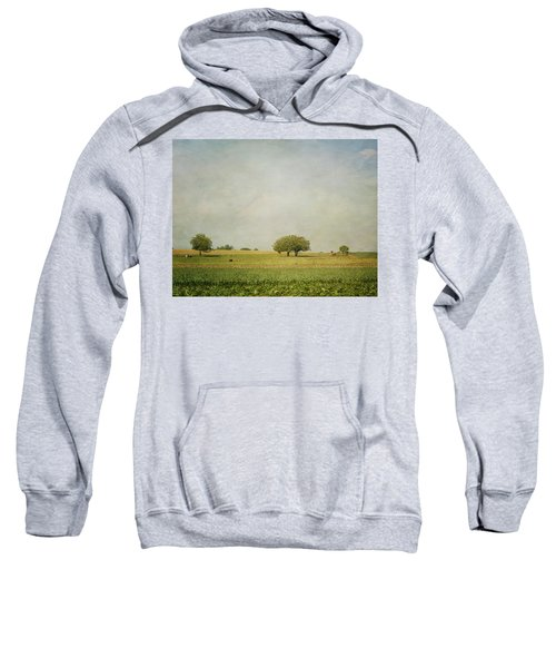 Grazing Sweatshirt