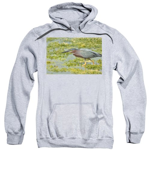 Green Heron On The Hunt Sweatshirt
