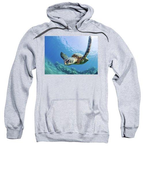 Green Sea Turtle - Maui Sweatshirt