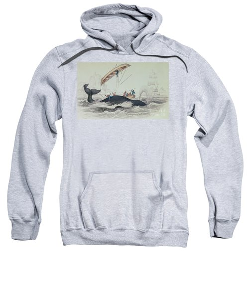 Greenland Whale Book Illustration Engraved By William Home Lizars  Sweatshirt