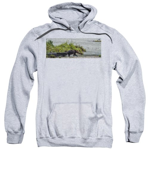 Grizzly Bear Late September 4 Sweatshirt