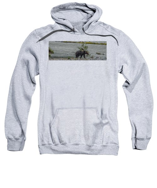 Grizzly Bear Late September 5 Sweatshirt