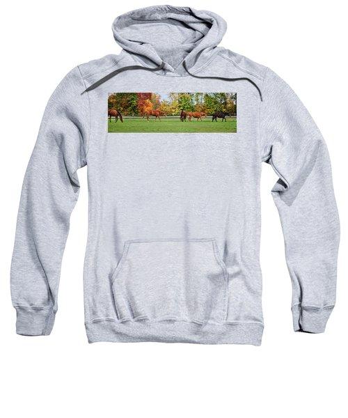 Group Activity Sweatshirt