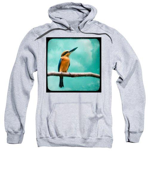 Guam Kingfisher - Exotic Birds Sweatshirt