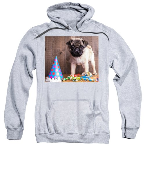 Happy Birthday Cute Pug Puppy Sweatshirt