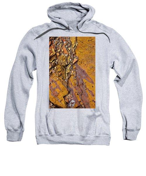 Hard Candy Sweatshirt