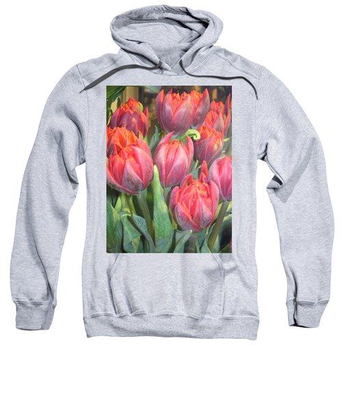 Hazardous Beauty Sweatshirt