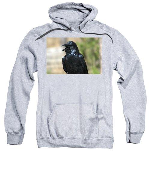 Hello.  Welcome Sweatshirt