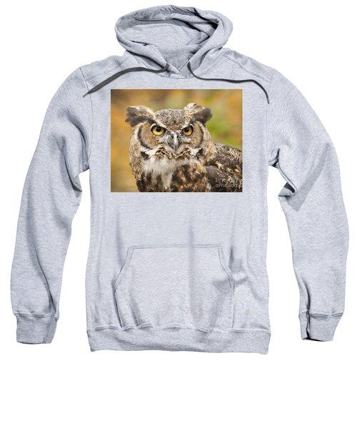 Here's Looking At You Sweatshirt