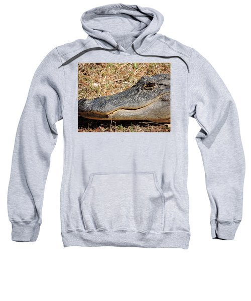 Sweatshirt featuring the photograph Heres Looking At You by Kim Pate