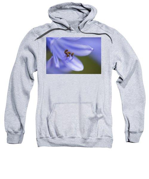 Highly Evolved Sweatshirt by Alex Lapidus