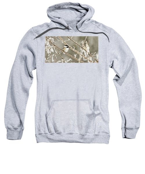Hoarfrost Morning Sweatshirt