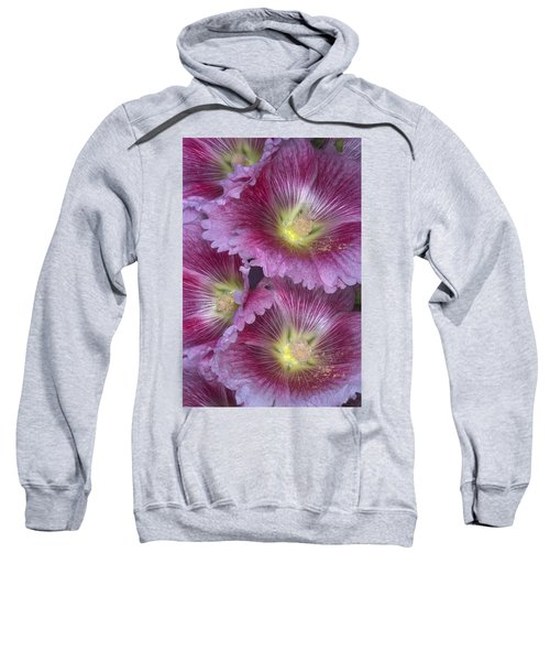 Hollyhocks Sweatshirt