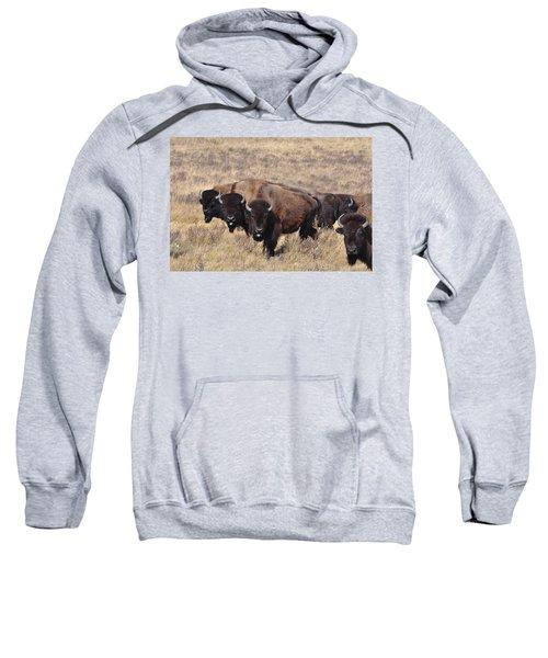 Home On The Range Sweatshirt