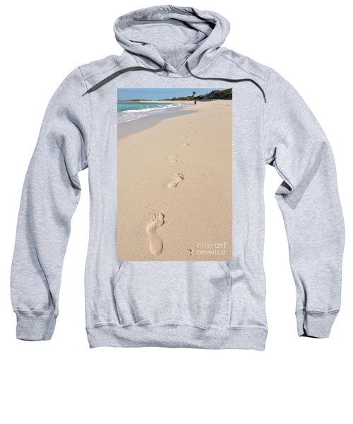 Homo Sapiens Sweatshirt