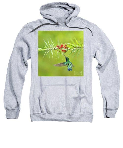 Honey Sucking Sweatshirt