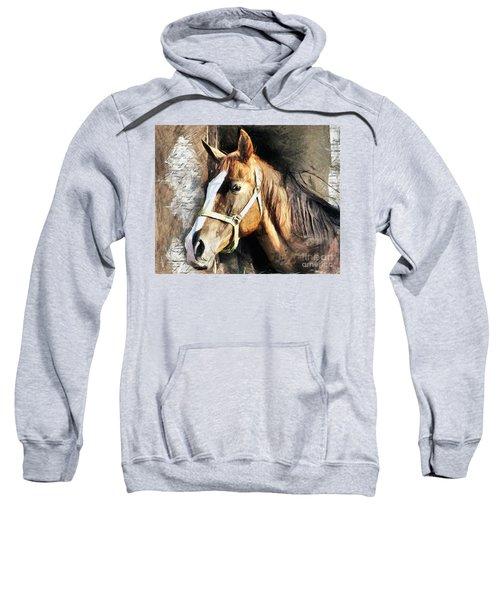 Horse Portrait - Drawing Sweatshirt