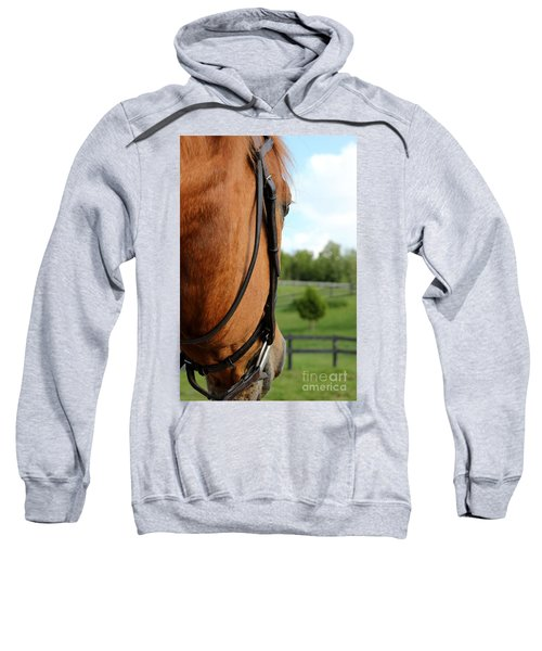 Horse View Sweatshirt