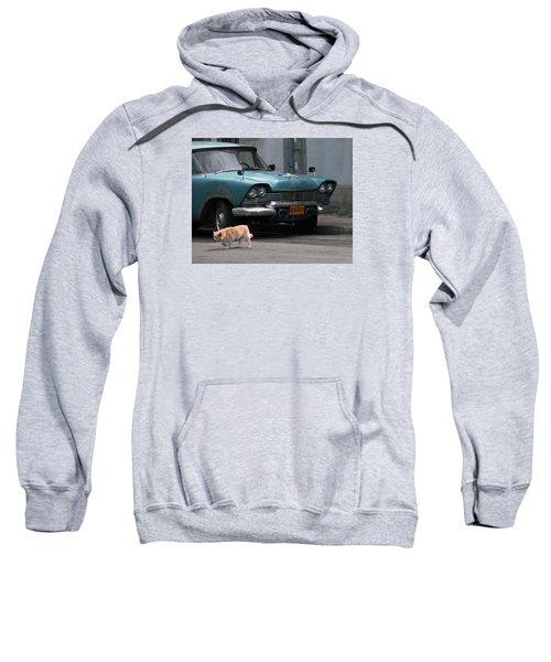 Hot Spot Sweatshirt