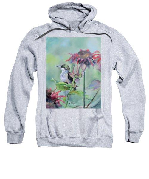 Hummingbird And Coneflowers Sweatshirt