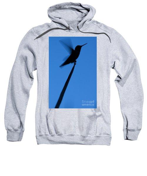 Hummingbird Silhouette Sweatshirt
