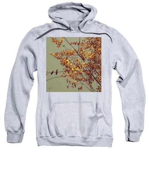 Hummingbirds On Yellow Tree Sweatshirt