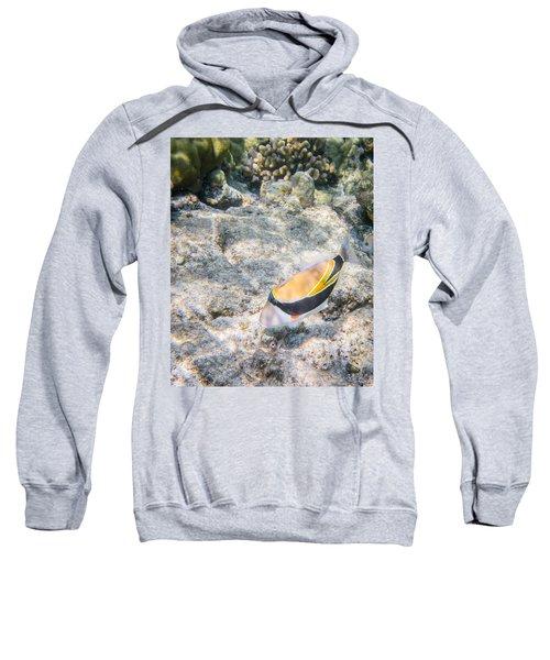 Humuhumunukunukuapua'a Sweatshirt