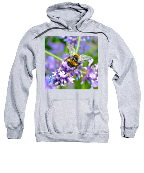 Hungry Bee Sweatshirt